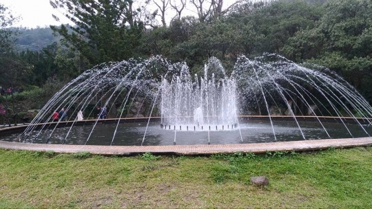 yangmingshan2