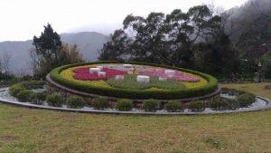 陽明山公園は台北郊外の自然豊かな花の名所。3月は桜も見頃【お花見】