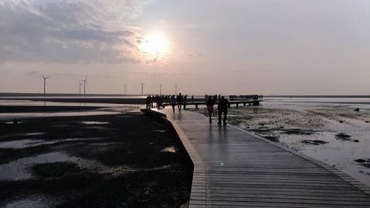 gaomei-wetlands14
